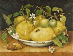 Lemons-Giovanna_Garzoni